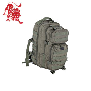 Backpack Assault I , olive