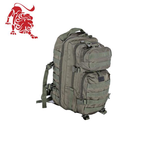 Backpack Assault I , olive